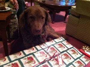 Henry Christmas 2012