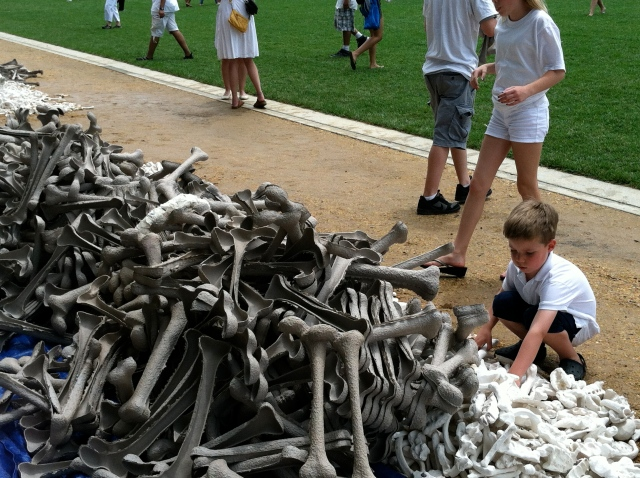 Boy places bones on the National Mall
