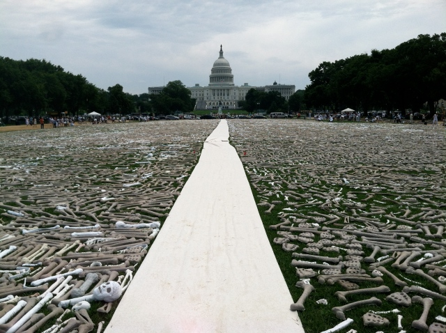 One Million Bones installation on National Mall